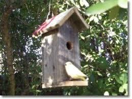 90 best swallow bird house plans images on pinterest bird house