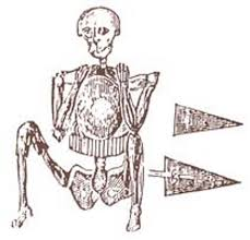 the fall river skeleton in armor new england historical society