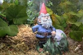 the 25 best gnomes for sale ideas on garden gnomes