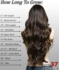 how long for hair to grow out of inverted bob hair growth calculator find out how long it ll take to grow your