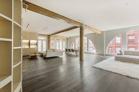 a soho loft with a secret cat tunnel penthouse at the lowell