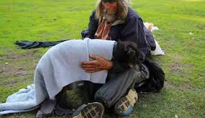 Dogs Helping Blind People She U0027s Dedicating Her Life To Helping Homeless People And Their
