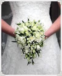 wedding flowers valley 142 best bouvardia wedding flowers images on bridal