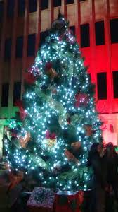 maui now complete list of maui christmas tree recycling programs
