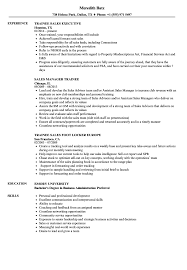 sales resume exles trainee sales resume sles velvet