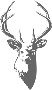 attractive inspiration ideas deer head coloring pages 5 free