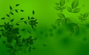 free green backgrounds page 2 of 3 wallpaper wiki