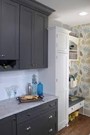 Dura Supreme Kitchen Cabinets Kitchen Fun With Storm Gray Transitional Kitchen Milwaukee
