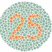 Color Blind Type Test Colorblind Information And Color Blind Selftest