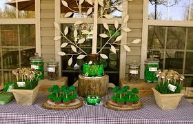 woodland themed baby shower baby boy shower woodland theme home party theme ideas