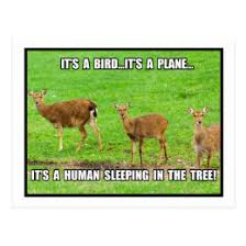 Funny Deer Hunting Memes - funny deer hunting meme gifts on zazzle