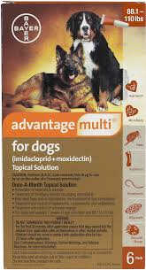advantage multi heartworms fleas worms mange free shipping