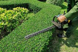 garten und landschaftsbau heilbronn gartenbau frank gartenbau heilbronn gartenbau ludwigsburg