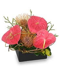 burlington florist modern tropical designs stainback florist gifts burlington nc