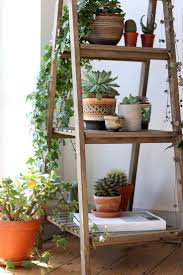 Plants Indoor by Plant Stand 46 Astounding Shelves For Plants Indoor Image Design