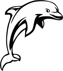 dolphin line drawing miami dolphins coloring page 843x947px