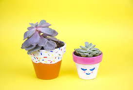 paint and pot cute succulents craftjam new york 30 sep 2017