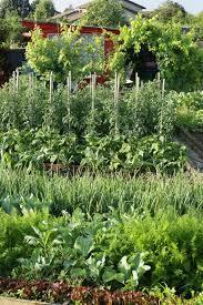 Design A Vegetable Garden Layout by Inspiration Kitchen Vegetable Garden Jardin Potager