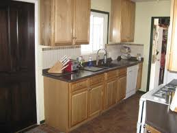 preassembled kitchen cabinets the shocking revelation of premade kitchen home decoration