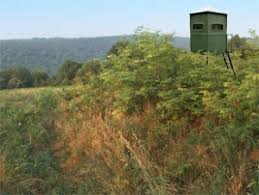 Natural Hunting Blinds Where To Put Tower Stands For Better Deer Hunting Hunting Advice