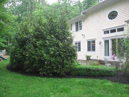 Landscaping Ideas For Small Backyard Nj Landscaping And Pool Designs For Small Backyards Nj Landscape