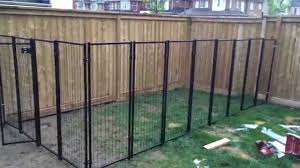 backyard renovation building the dog fence part pictures with