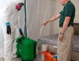 mold removal and mold remediation servpro industries inc