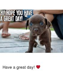 Have A Good Day Meme - hii hope you have a great day have a great day meme on me me