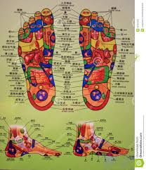 Foot Reflexology Map Foot Massage Chart Editorial Image Image 28197040