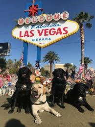 Federal Bureau Of Investigation Welcome To Fbi Fbi Crisis Response Canines And Partners Fbi Federal Bureau