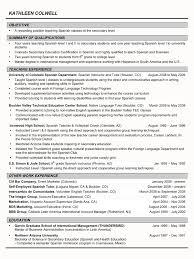 Monster Resume Sample by Monster Resume Services