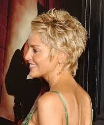 side and back views of shag hairstyle short layered hairstyles fine hair wow com image results