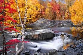 fall foliage england england foliage