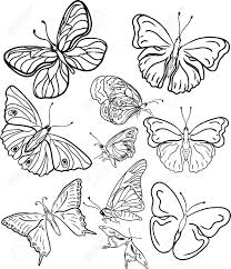 butterfly wall stickers images stock pictures royalty free butterfly wall stickers outline butterfly silhouettes illustration