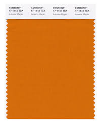 pantone trends 2017 pantone u0027s top 10 autumn fashion colours digital arts