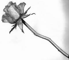 rose in black and white free download clip art free clip art