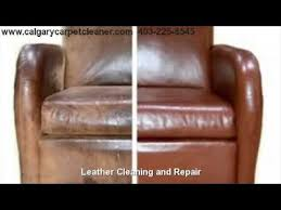 Remove Cat Urine From Sofa Pet Urine Stain Removal 403 225 8545 Nw Calgary Alberta Chem
