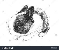 drawn bunny children u0027s pencil and in color drawn bunny children u0027s