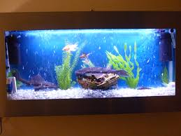 Wall Aquarium by Stuning Stainless Steel Wall Aquarium One Off Must See At Aquarist