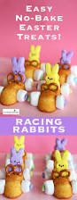 Pinterest Easter Decorations With Peeps by Easter Racing Rabbits No Bake Treats Peeps Easter And Cars