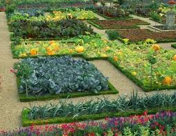 69 best edible landscaping images on pinterest edible garden