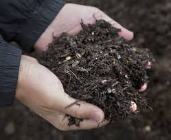minneapolis prepares for major composting test startribune com