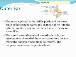 structure and functions of the eye and the ear