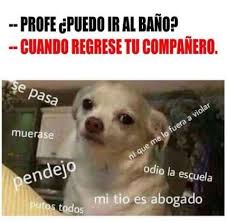 Memes En Espa Ol - imágenes de memes en español http www fotosbonitaseincreibles