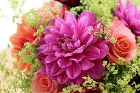 best flower delivery service london flower delivery service flowers24hours reveals top tips for
