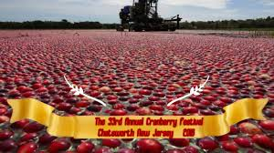 chatsworth nj cranberry fest 2016 youtube