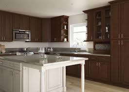Shop Rta Cabinets Ready To Assemble Kitchen Cabinets Kitchen Cabinets