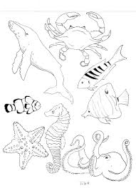 ocean life coloring book page by sarahtuleartworks on etsy