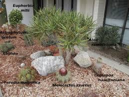 campus plant identification mead hall the john r rodman arboretum