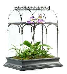 amazon com h potter glass terrarium planter succulent container